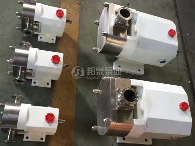 不锈钢凸轮转子泵泵头