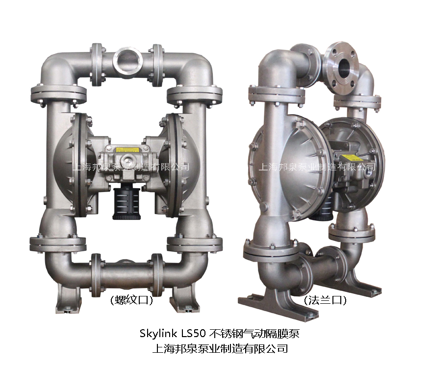 Skylink LS50SS-T/N-TT-TT-00不锈钢气动隔膜泵