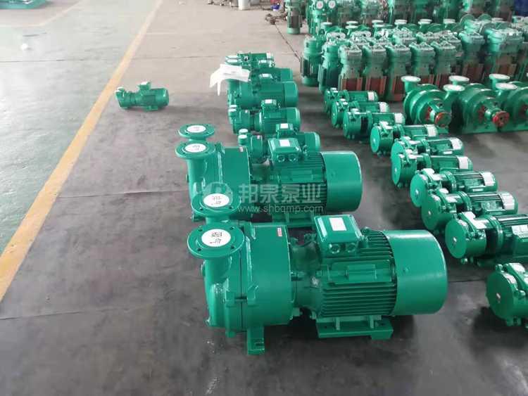 真空引水泵 2BV液环真空泵 水环式真空泵