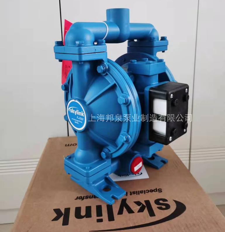LS25K,AA-AA-SP-SP-SP-00气动隔膜泵